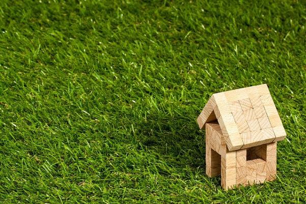 野原に経つ木の家