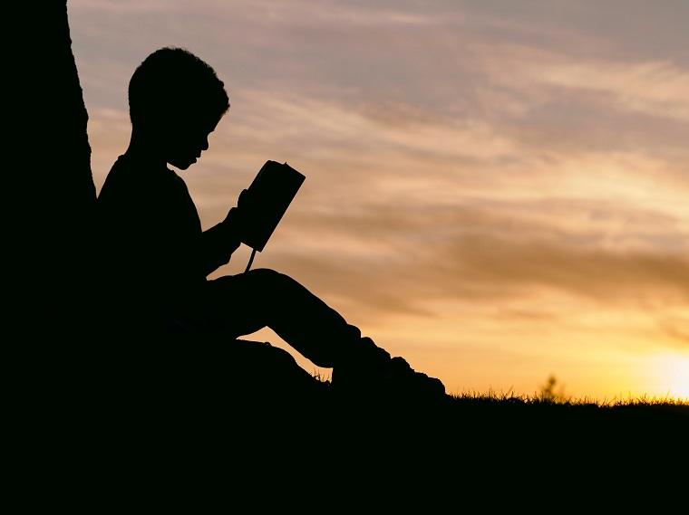 夕暮れまで本を読んで勉強する人